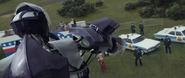 Sentinel targeting