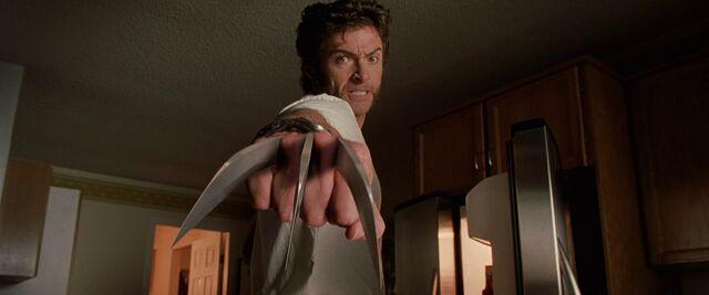 File:Wolverine x2.jpg