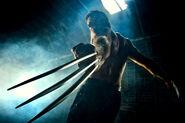 Shirtless Wolverine