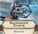 Guidance Chips