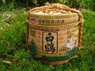 Sake Jar