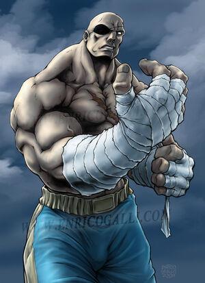 Street Fighter 2 sagat 3d