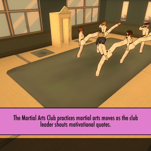The club members practicing martial arts moves. February 15th, 2016.