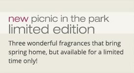 20150206 Picnic In The Park Banner yankeecandle com