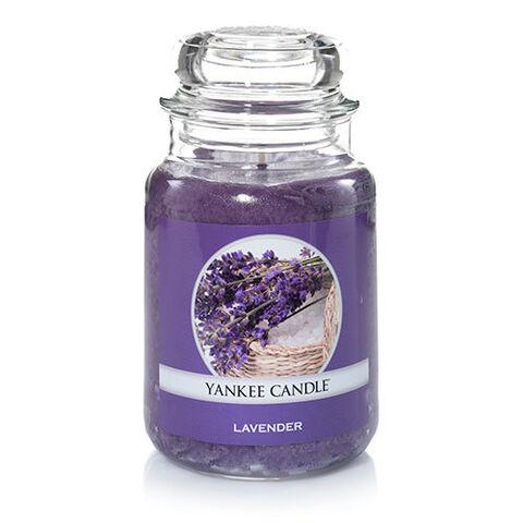 File:20150826 Lavender Lrg Jar yankeecandle com.jpg