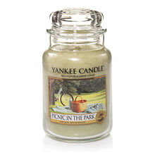 20150215 Picnic In The Park Lrg Jar yankeecandle com
