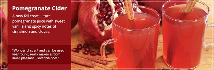 20150328 Pomegranate Cider Frag Fam Banner yankeecandle com
