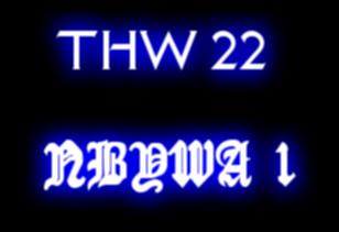 THW 22-NBYWA 1 Small