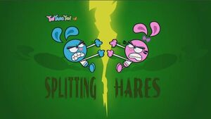 230b - Splitting Hares