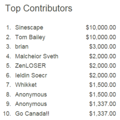 The Top 10 Contributors for the 2015 Jingle Jam