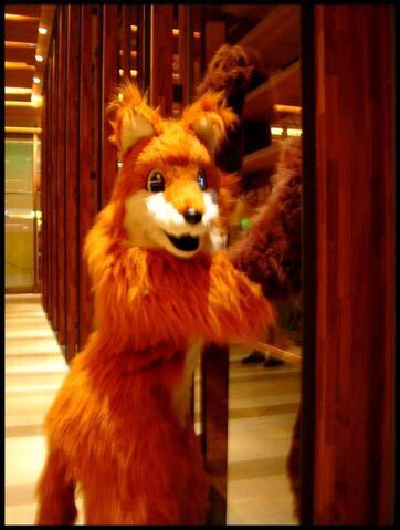 檔案:Firefox 02.jpg