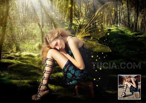 File:Dragonfly Fairy.jpg