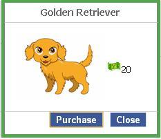 File:Golden retriever.JPG