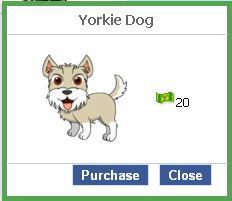 File:Yorkie dog.JPG