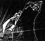 ShadowShield-EN-Manga-R-CA