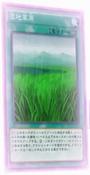 Wetlands-JP-Anime-AV