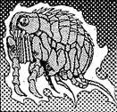 File:GiantFlea-JP-Manga-DM-CA.png