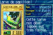 LarvaeMoth-ROD-FR-VG