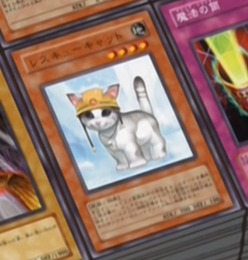File:RescueCat-JP-Anime-GX.png
