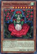 TytannialPrincessofCamellias-AP04-DE-C-UE