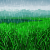Wetlands-DG-EN-VG-Field