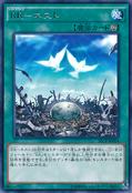 RaidraptorNest-SECE-JP-R