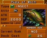 PupaofMoth-DOR-EN-VG