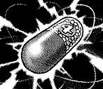 File:TrickysMagic4-JP-Manga-DM-CA.png