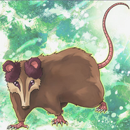 PlayfulPossum-OW