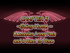 WC11 Chapter 5