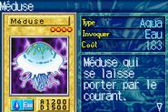 Jellyfish-ROD-FR-VG