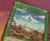 RaidraptorNest-JP-Anime-AV-2