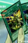 MyBodyasaShield-JP-Anime-DM