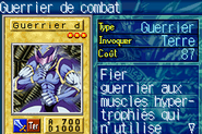 BattleWarrior-ROD-FR-VG