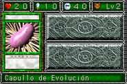 CocoonofEvolution-DDM-SP-VG