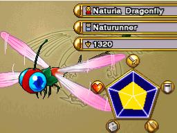NaturiaDragonfly-WC11
