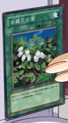 File:InsectGarden-JP-Anime-GX.png
