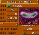 Larva of Moth