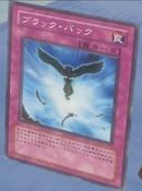 Blackback-JP-Anime-5D
