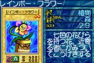 RainbowFlower-GB8-JP-VG