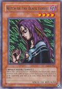 WitchoftheBlackForest-DB2-EN-R-UE