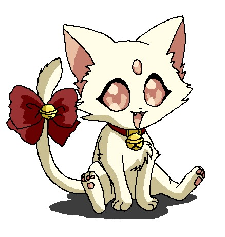 File:White Petit Kitten2.jpg