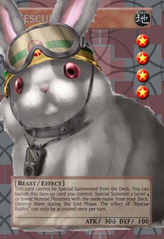 File:RescueRabbit-1 - Copy.jpg
