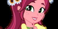 Gloriosa Daisy (EG)