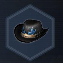 Cowboy hat c