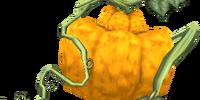 Ordon Pumpkin