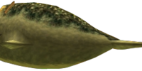 Lord Chapu-Chapu