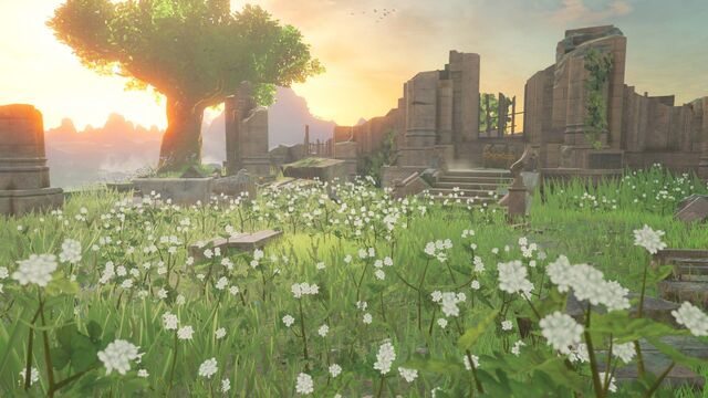 File:BreathOfTheWild-Screen04.jpg