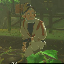 File:Olkin (Breath of the Wild).png