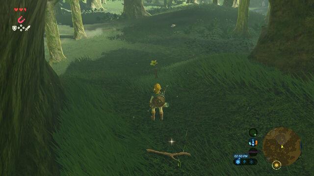 File:Forest of Spirits.jpg